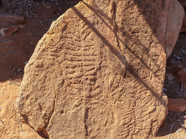 Petroglyphs of caterpillar and butterfly significance in the East Macs