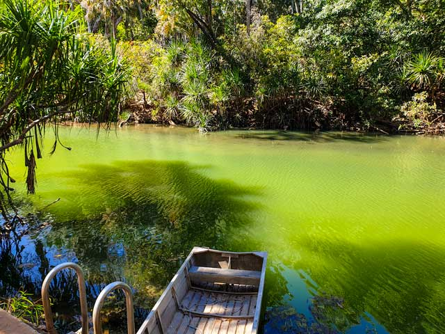 The green waters of the Roper River