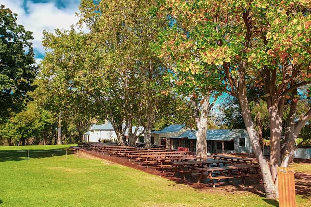The beer garden at Homestead brewery in the Swan Valley
